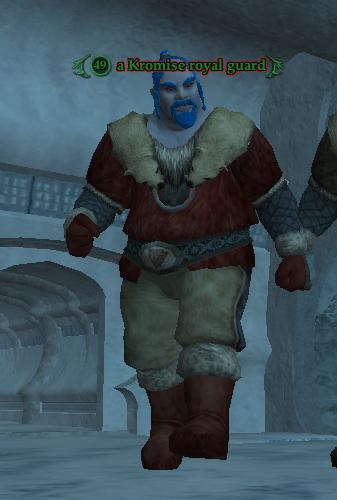 A Kromise royal guard