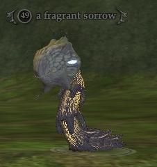 A fragrant sorrow