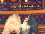 A Blacktalon disciple