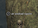 An undead squire