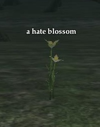 A hate blossom