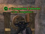 A Grungetalon bartender