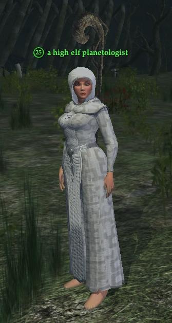 A high elf planetologist