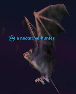 A nocturnal hunter
