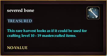 Severed bone