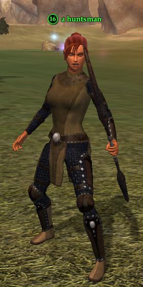 A huntsman