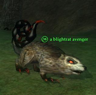 A blightrat avenger.png