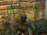 A hired assassin (Crypt of Betrayal)
