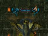 Venekor (Spirits of the Lost)