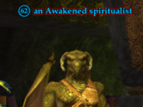An Awakened spiritualist