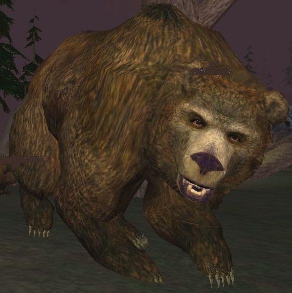 Race bear.jpg
