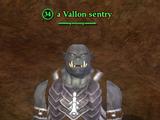 A Vallon sentry