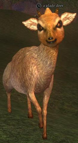 A glade deer