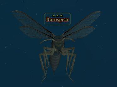 Burnspear