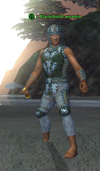 A Blackshield assassin (Timorous Deep) (human).png