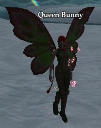 Queen Bunny