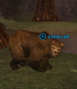 A bear cub (Oakmyst Forest).png