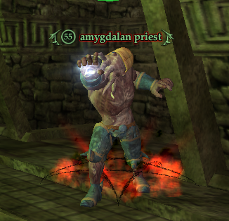 Amygdalan priest
