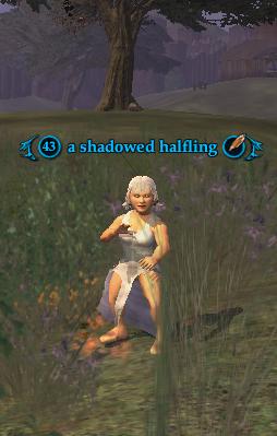 A shadowed halfling (Rivervale)