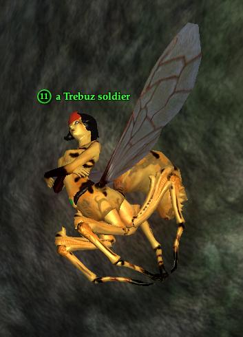 A Trebuz soldier