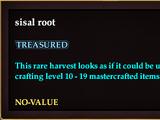 Sisal root