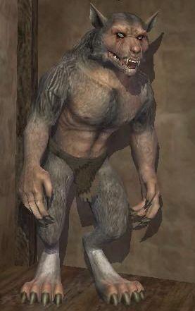 Race werewolf.jpg