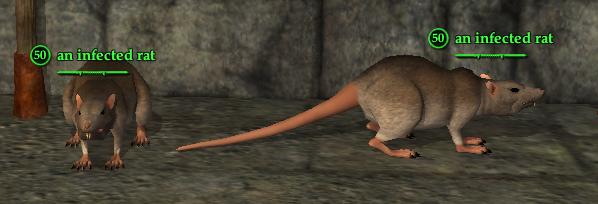 Rat (Berserker)