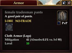 Female tradesman pants