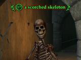 A scorched skeleton