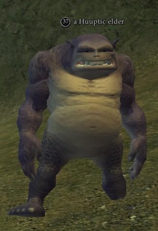 A Huuptic elder