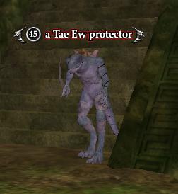 A Tae Ew protector