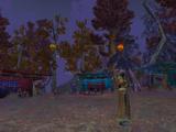 Wanderlust Fair