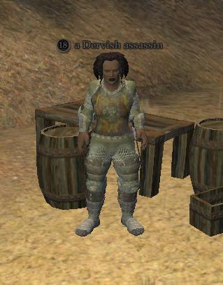 A Dervish assassin