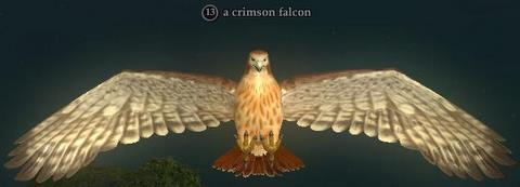 A crimson falcon