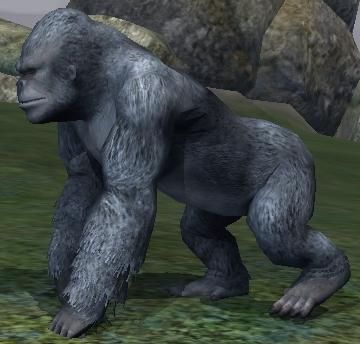 Race gorilla.jpg
