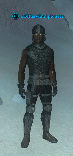 A Bitterwind pioneer (solo) (human).png