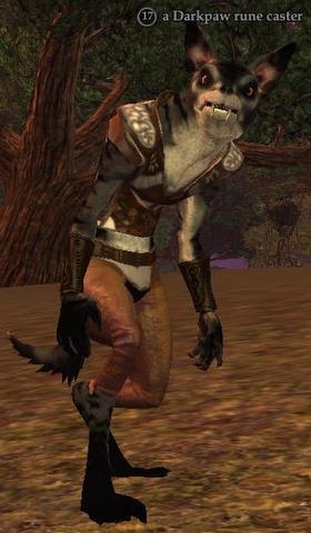 A Darkpaw rune caster