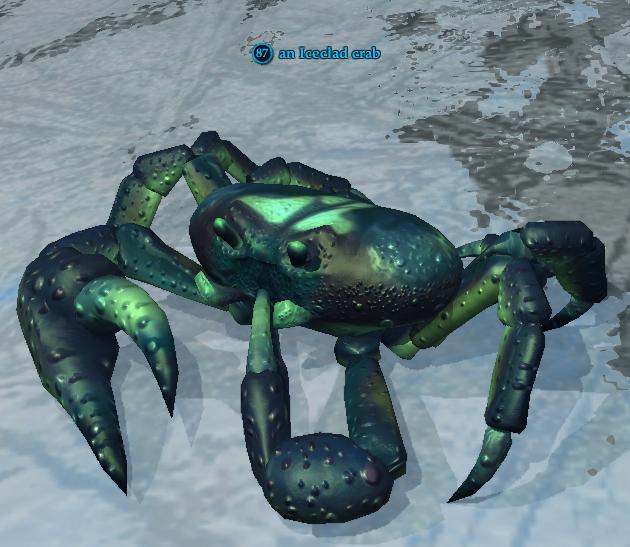An Iceclad crab