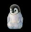 Idea penguin race
