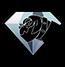 Idea diamond dog race