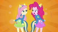 Fluttershy and Pinkie Pie splash screen