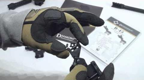 Diamond Integrated Sighting System