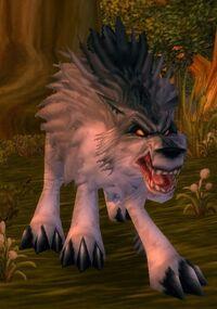 Imagen de Lobo grisáceo del bosque