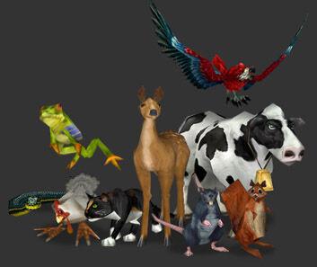 Critters.jpg