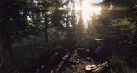 Escape from Tarkov Woods 1