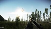 Escape from Tarkov Woods 14