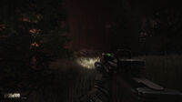 Escape from Tarkov Woods 2