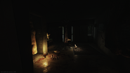 Shoreline - East wing room 321 key - Cultist ritual spot (1)