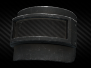 Rys-T face shield front