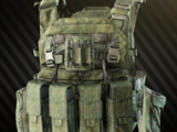 ANA Tactical M2 armored rig